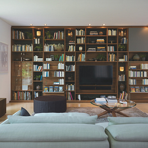 Shelf systems/library